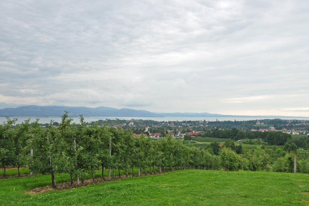 Bodensee Obstanbau